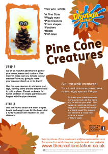 Make your own Pine Cone Pal